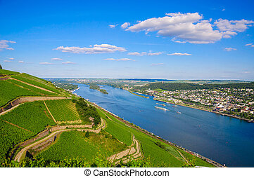 Vineyards and ruins near Rhine river, Bingen am Rhein,...