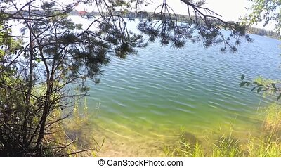 blue lake near trees - Beautiful view of blue lake near...