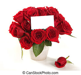 Roses in a Pot With Blank Message Sign f - Bouquet of Roses...