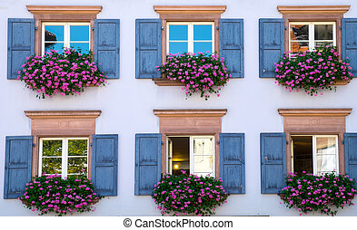 Window of a house in Freiburg