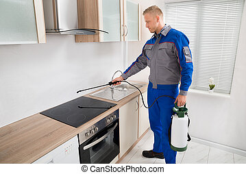 Pest Control Worker Spraying Pesticide On Induction Hob -...