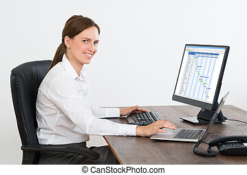 Businesswoman Working With Computer At Desk - Young...