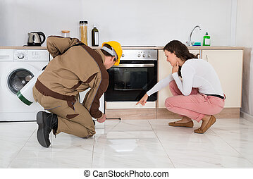 Worker Spraying Insecticides In Front Of Housewife - Male...