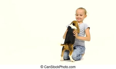 Cute little Beagle puppy sitting on a girl's lap. Slow...
