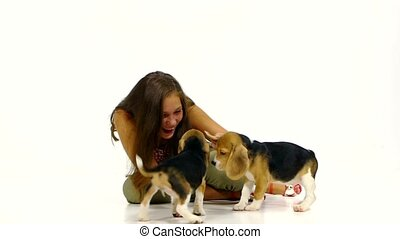 girl  played with cute beagle puppy on studio. Slow motion