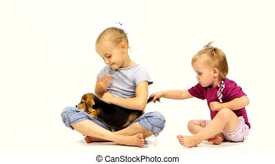 A Baby with Beagle puppy dog over white background. two...