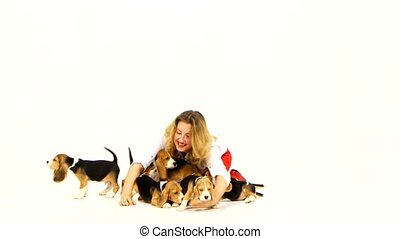 woman with cute beagle puppy on a white background, many...