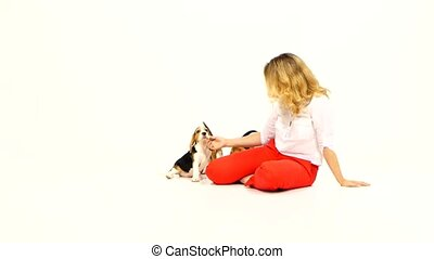 woman in white blouse  cute beagle puppy on a white on studio