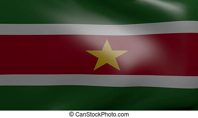 suriname strong wind flag