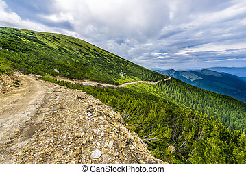 landscape with a mountain road in the Carpathians
