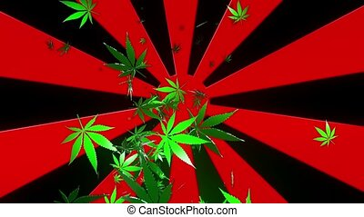 Abstract sunburst with cannabis leaves on black background