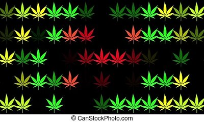 Multicolored cannabis leaves in rows on black