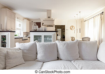 Kitchenette in the storey house - Living room with...