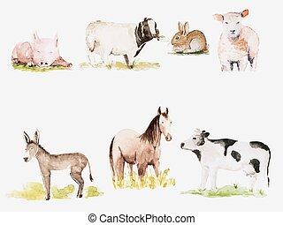 Farm animals - Vector watercolor drawn farm animals set