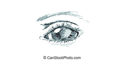Illustrated Eye