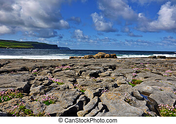 burren limestone beach by west coast of ireland - photo...