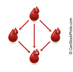 Red blood type chart - Red blood type compatibility chart...