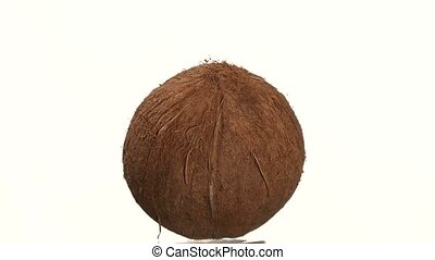 Coconut isolated on white, rotation - One coconut isolated...