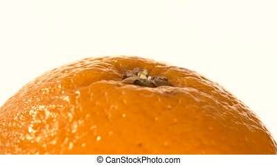 Top of ripe orange isolated on white, rotation, close up -...