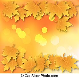 Autumn leaves background with leave