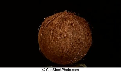 Coconut isolated on black, rotation - One coconut isolated...