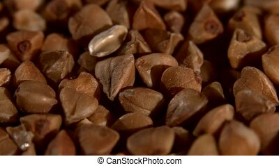 Buckwheat, background, rotation, close up