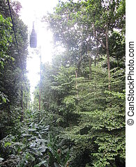 St Lucia Aerial Tram in the Caribbean