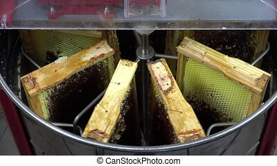 honey extraction - 8 frames will be emptied of honey by...