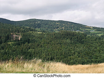 Vosges scenery - idyllic rural scenery at the Vosges, a...
