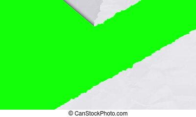 Tearing white paper revealing a green screen - diagonal...