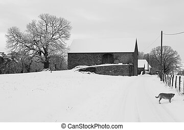 country house in snow - Country house and dog in the snow in...