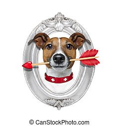 valentines arrow dog in frame - valentines jack russell dog...