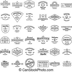 Vintage retro logo badges set