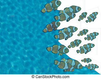 fish and water - blue water and shoal of fish clown