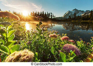 Picture lake - Mount Shuksan,Washington