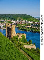 Ehrenfels Castle on Rhine river near Ruedesheim
