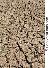 Arid land with dry and cracked ground, Global warming effect.