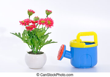 Watering pot with flower and pot, conception