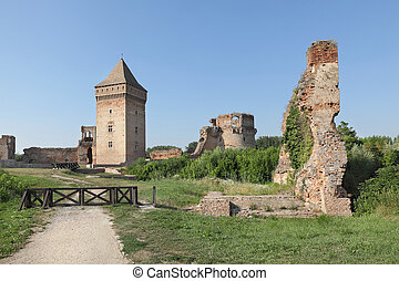 Bac fortress, Serbia, Europe - Bac, medieval fortress in...