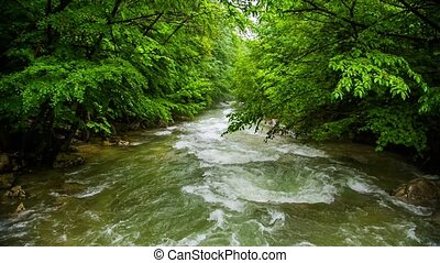 Calm Mountain River Flowing Down Among Greenery In Forest -...