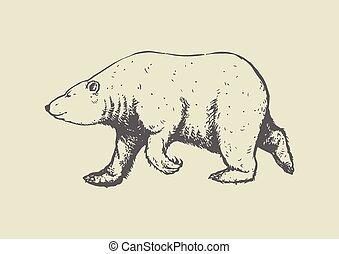 polar bear walking pose