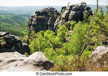 Sandstone rocks, forests and blue sky in the Czech...