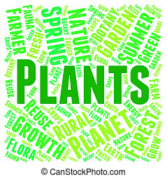Plants Word Indicates Flora Text And Botanical - Plants Word...