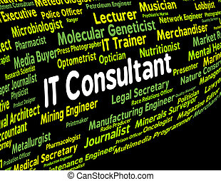 Information Technology Consultant Represents Employment Connection And Work