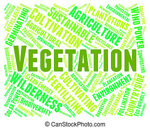Vegetation Word Indicates Plant Life And Botanical -...