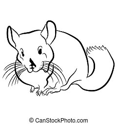 Chinchilla Outline Icon - An image of a chinchilla