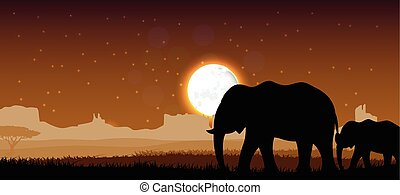 Elephant family sunset. Vector
