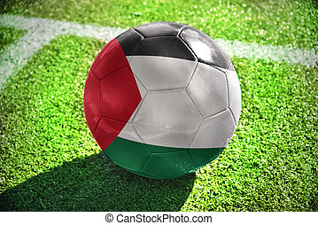 football ball with the national flag of palestine lies on...