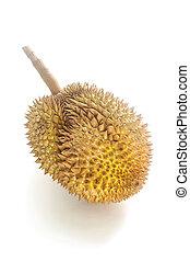 Fresh durian fruit isolated on white background