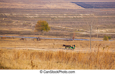 Horse drawn carriage on the country road from Stanca...